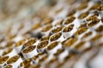 Tobacco-backed muni bonds get boost from social distancing
